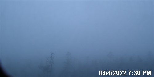 Acadia National Park, Maine: Live Right Image